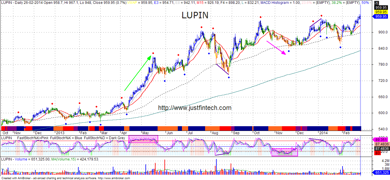 Stochastic-Lupin_Study